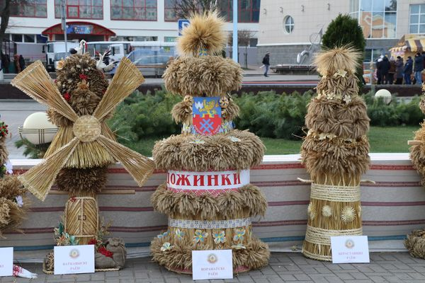 Говорят участники праздника аграриев «Дожинки-2019», делегаты из Вороновского района