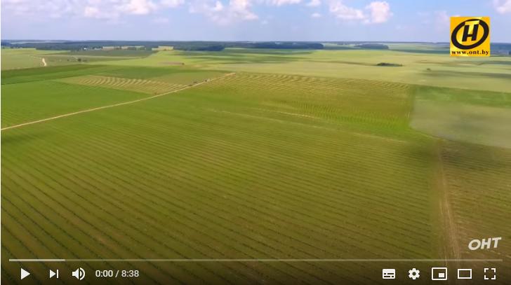 Удивительное путешествие!/ «Моя Беларусь»: Гродненщина — край, который умеет удивлять (Видео)